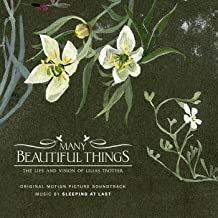 Many Beautiful Things (Original Motion Picture Soundtrack)