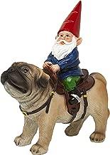 Funny Guy Mugs Garden Gnome Statue - Gnome Riding a Pug - Indoor/Outdoor Garden Gnome Sculpture for Patio, Yard or Lawn