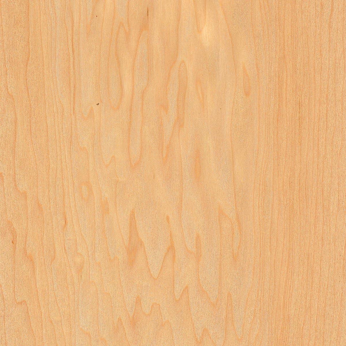 Wood-All Maple Wood Veneer Very popular Cheap SALE Start Sheet Rotary Cut Whole - Piece Face