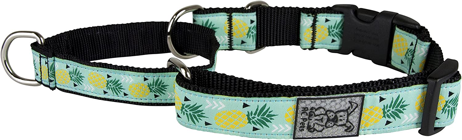 RC Pet Products 3 4  Easy Clip Martingale Training Dog Collar, Pineapple Parade, XSmall