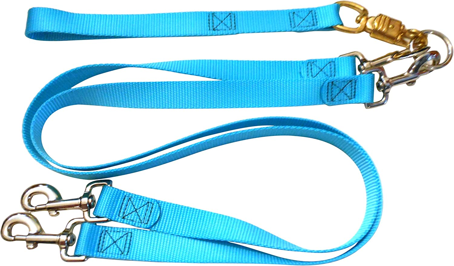 Pet WalkerPlus  307 Pet Leash for Dog, Large, Turquoise