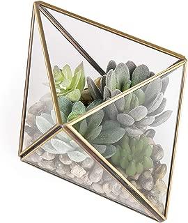 MyGift Glass & Brass Geometric Terrarium with Faux Succulent Plants