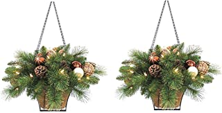 plants for christmas hanging baskets