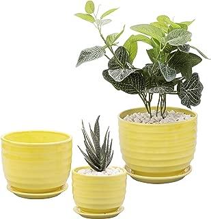 Set of 3 Small to Medium Sized Round Modern Ceramic Garden Flower Pots, Yellow