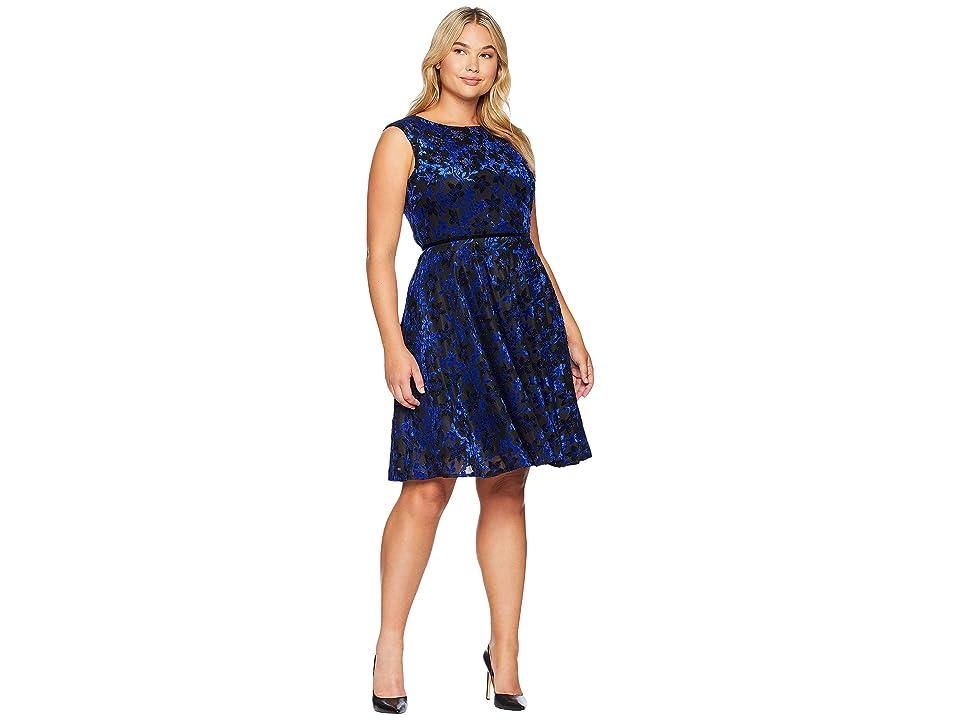 Tahari by ASL Velvet Burnout Floral A-Line Dress (Black/Cobalt Blue) Women