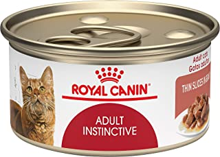 Best royal canin glycobalance cat food Reviews