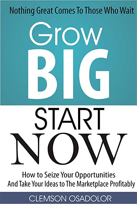 Grow Big Start Now: How to Seize Your Opportunities And Take Your Ideas to The Marketplace Profitably! (English Edition)
