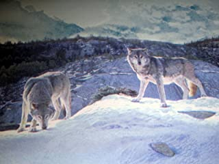Timber Wolves Wolf Pack Lodge Wallpaper Border - CW102771