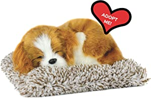 Mini Cavalier King Charlers, Realistic, Lifelike Stuffed Interactive Plush Toy, Electronic Pets, Companion Pet Puppy with 100% Synthetic Fur – Perfect Petzzz