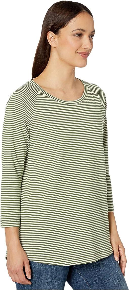 Bronze Green Stripe