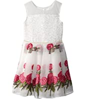 Nanette Lepore Kids Embroidered Organza Dress (Little Kids/Big Kids)