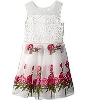 Embroidered Organza Dress (Little Kids/Big Kids)