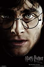 Trends International Potter and The Deathly Hallows: Part 1-Harry One Sheet Wall Poster, Multi