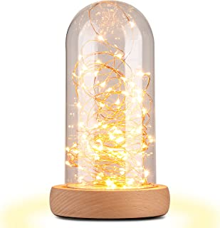 Light Town Glass Dome Bedside Table Lamp Bell Jar Display with Switch Desk Lamp Solid Wood Base String Bedside Table Lamp with USB LED Warm Fairy Starry String Lights,Perfect for anywhere in the house