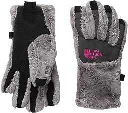 The North Face Kids - Denali Thermal Etip Gloves (Big Kids)