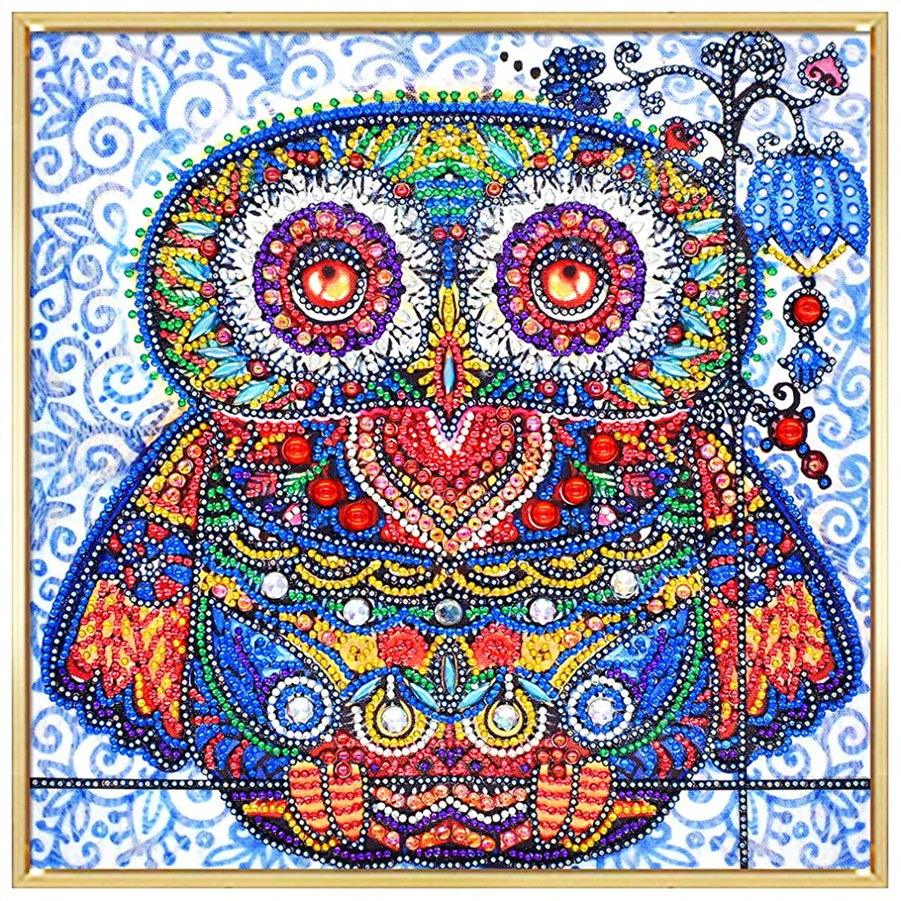 HuaCan Diamond Painting DIY 5D Special Shape Partial Drill Owl Crystal Rhinestone Embroidery Pictures Arts Craft Kits for Adults Kids Home Wall Decor Printed Frame 30x30cm/11.8x11.8in