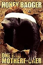 NMR/Aquarius Honey Badger One Bad Poster
