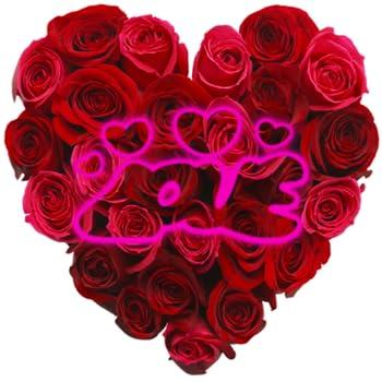 Best rosas con mensajes Reviews