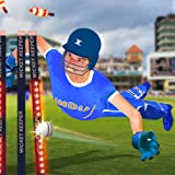 Wicket Keeper 2019: Cricket Cup