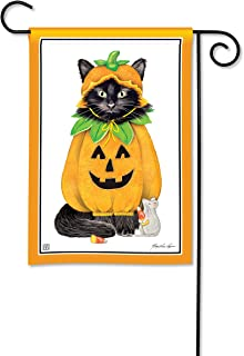 BreezeArt Studio M Halloween Cat Garden Flag - Premium Quality, 12.5 x 18 Inches