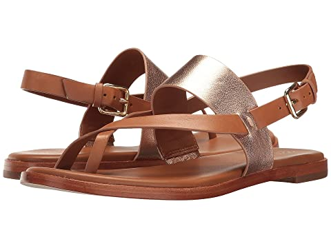 478987ab6971 Cole Haan Anica Thong Sandal at Zappos.com