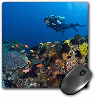 3Drose 8 X 8 X 0.25 Inches Mouse Pad Scuba Diving, Apo Island, Philippines, Stuart Westmorland (mp_74813_1)