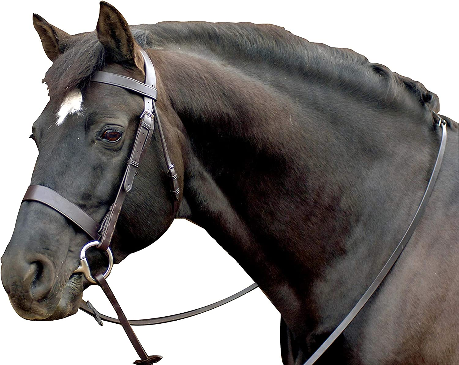 Caldene Ranking TOP12 Bridle Plain Reins Genuine Free Shipping Wide With
