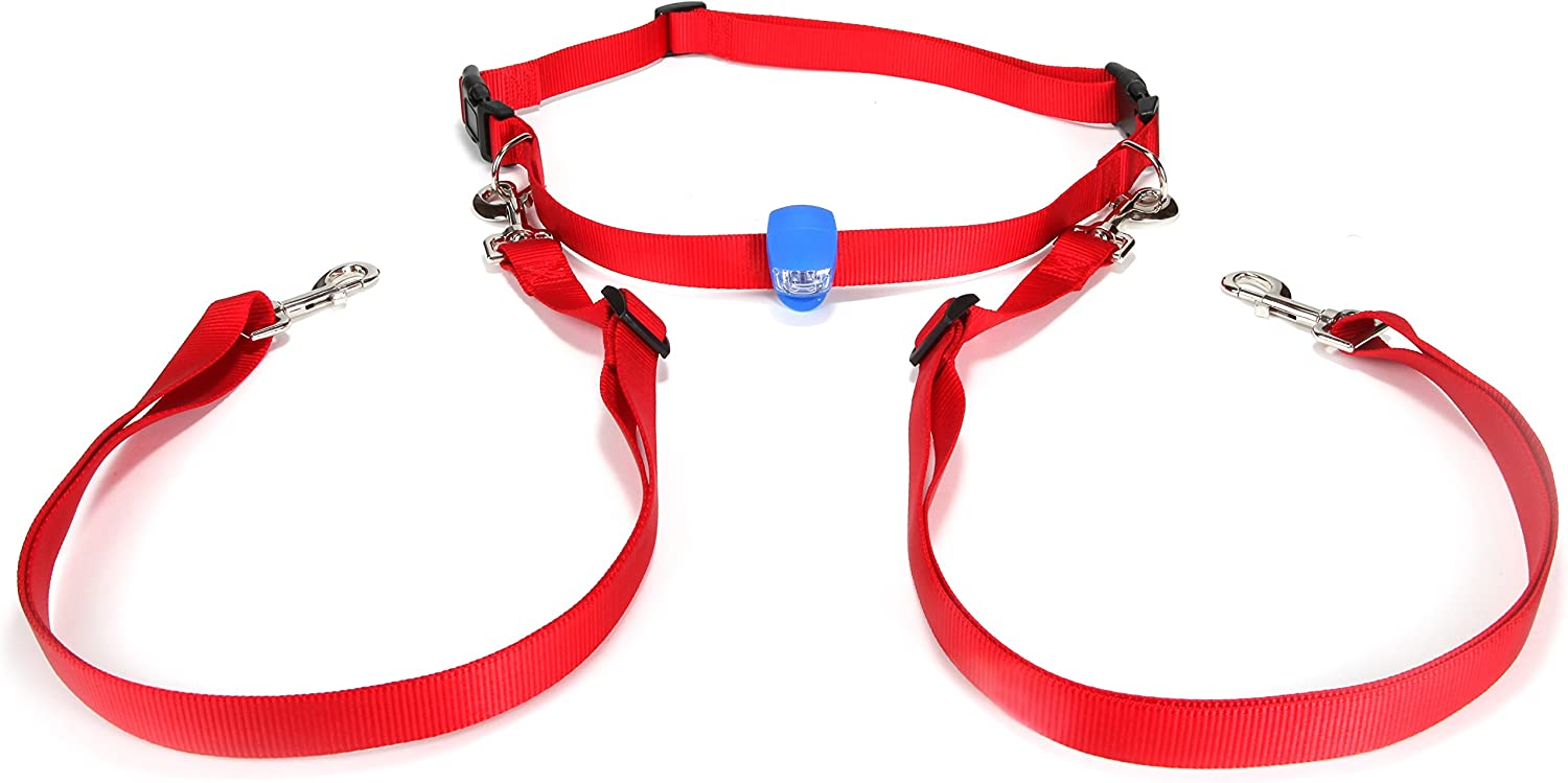 Double Running Dog Leash Hands Free – for 2 Dogs. Including LED Light. Great for Walking, Running, Biking and Jogging. (Red)