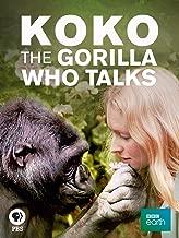 Best mammal 2016 dvd Reviews