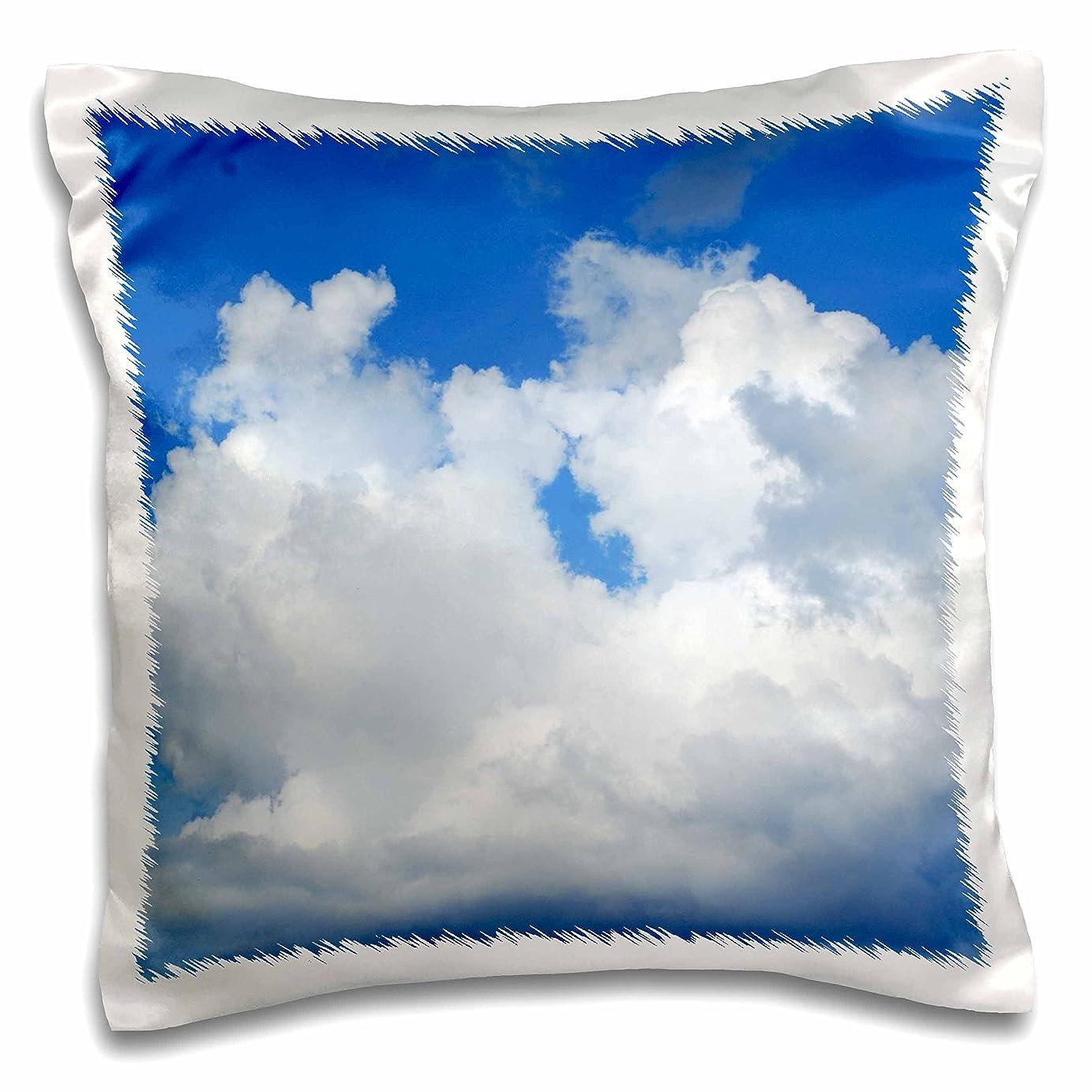 窒息させる区画シェル3dローズFlorene Clouds?–?PrettyホワイトPuffy雲Nブルースカイ?–?枕ケース 16