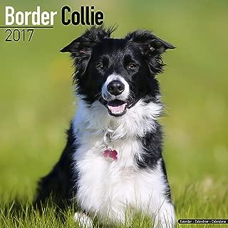 Best collie calendar 2017 Reviews