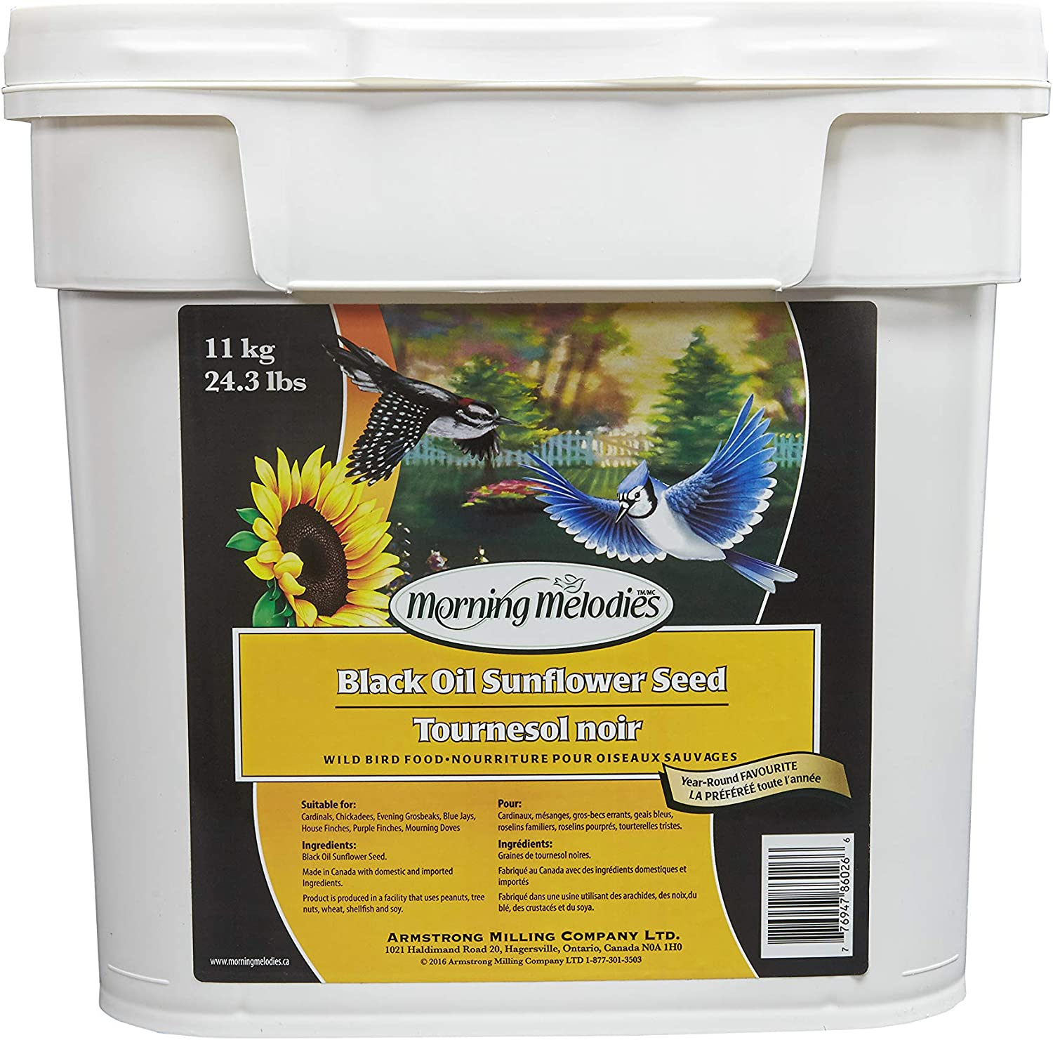Morning Melodies 409263 Black Oil Sunflower Seed Pail 11kg, 1 Piece, Large