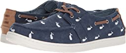 TOMS - Oceana Lace-Up