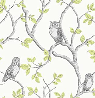 Best green owl wallpaper Reviews