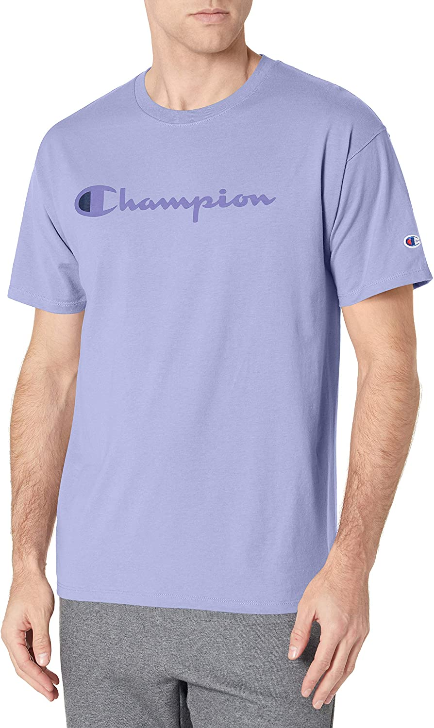 Max A surprise price is realized 67% OFF Champion Men's Classic T-Shirt Screen Print Script
