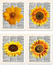 Casi Art Sunflowers 8x10 Set of 4 Un Framed Prints. On Upcycled Vintage Style Dictionary Page. Ideal for Sunflower Lovers, and Anyone who Want to Brighten up Their Kitchen, Office or Other Home Room