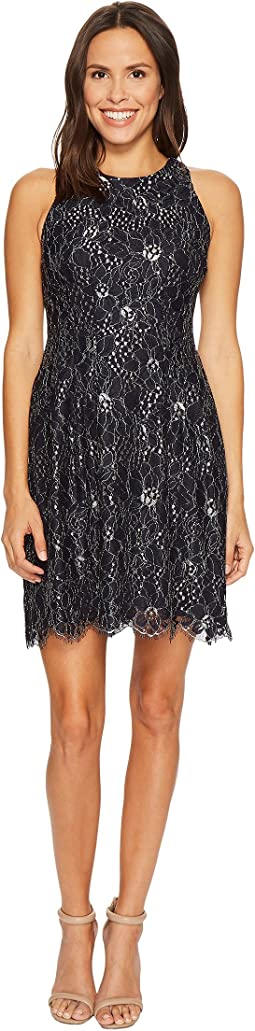 Vince Camuto - Lace Fit and Flare Dress w/ Keyhole at Back