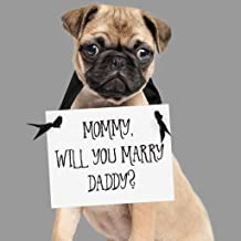 Proposal Sign for Dog or Child Mommy Will You Marry Daddy? Engagement Banner Son, Daughter, Puppy   7
