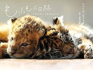 もふもふ日誌 ~仔トラと仔ライオン、ときどきウサギ~