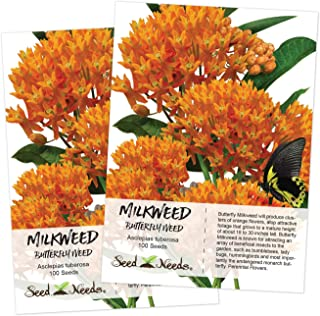 Best orange glory butterfly plant Reviews
