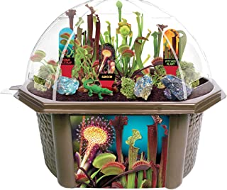 Toys By Nature Grow Your Own Venus Fly Trap - Complete Kids Terrarium Kit to Plant Carnivorous Creatures That EAT Bugs - Includes Seeds for 6 Live Plants