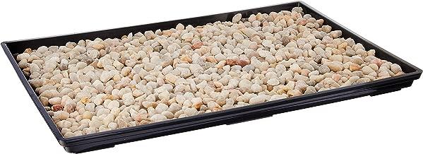 bonsai drip tray