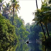 Tropical Lake: Dawn on a Small Boat - Birds & Oars