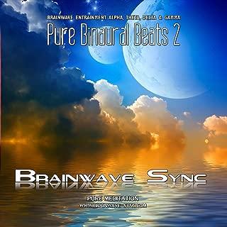 Pure Binaural Beats 2 - Alpha, Theta, Gamma and Delta Brainwave Entrainment - Music for Meditation