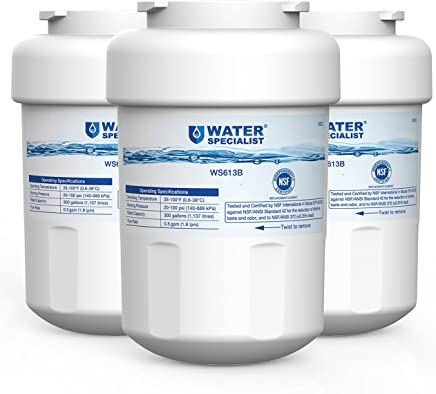 Waterspecialist MWF Refrigerator Water Filter, Replacement for GE SmartWater MWFP , MWFA, GWF, HDX FMG-1, WFC1201, GSE25GSHECSS, PC75009, RWF1060, 197D6321P006 (Pack of 3)