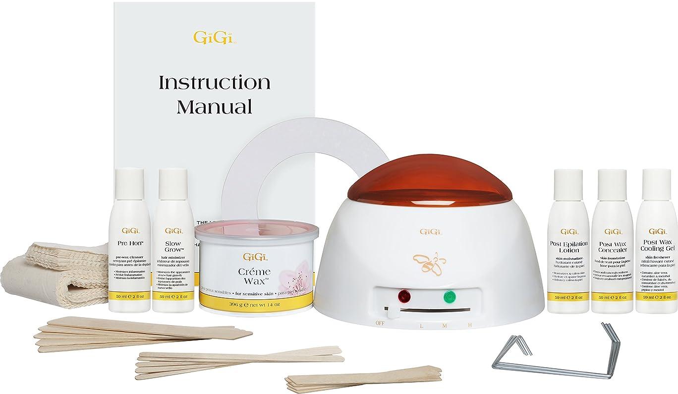 一目保持する意見Gigi Mini-Pro Kit Heater/Wax/Lotion/Wax-Off/Gel (並行輸入品)