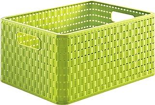 Rotho Country Boîte de Rangement 18L en Rotin, Plastique (PP) sans BPA, Vert, A4/18L (36,8 x 27,8 x 19,1 cm)