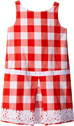 Red Gingham Dress (Toddler/Little Kids/Big Kids)