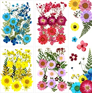 Flower Press Dried Flowers for Resin Jewelry, Soap and Candle Making