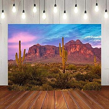 Dusk Desert Hillside Cactus Plants Scenic 10x5ft Polyester Photography Background Golden Sunset Glow Continuous Mountains Backdrop Wedding Shoot Indoor Decors Landscape Wallpaper Studio